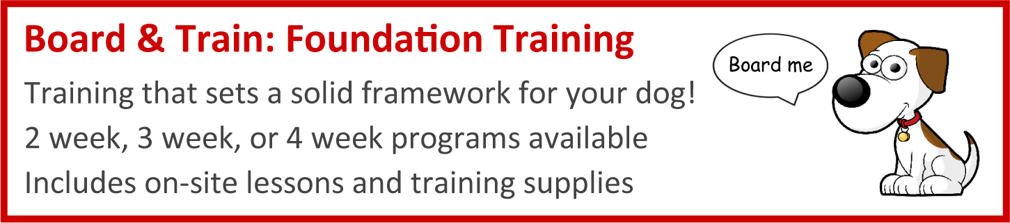 Board & Train: Foundation Training