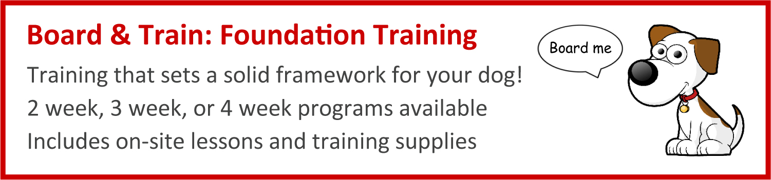 In-Home Training & Behaviour Modification